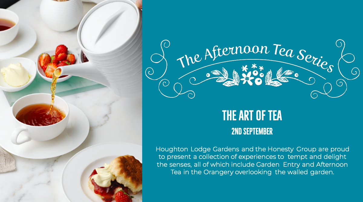 The Afternoon Tea Series - The Art of Tea