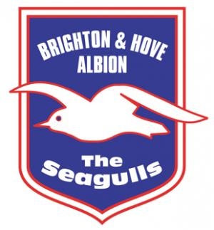 Hampshire Chronicle: Football Team Logo for Brighton & Hove Albion