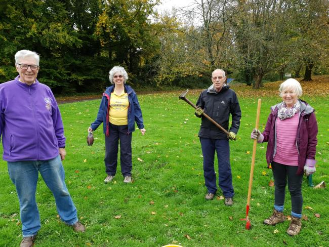 Bishop's Waltham Rotary Club plants crocuses for End Polio Now