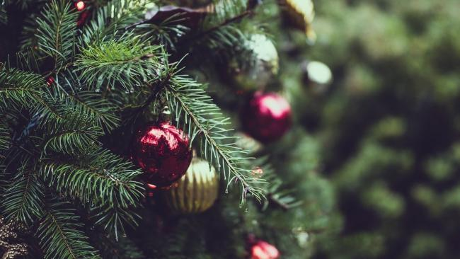 Women accused of stealing miniature Christmas tree and shoes