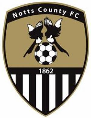 Hampshire Chronicle: Football Team Logo for Notts County