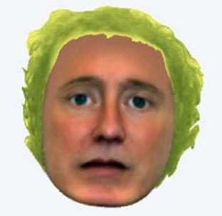 The Hampshire Constabulary e-fit showing the suspect with lettuce style hair.