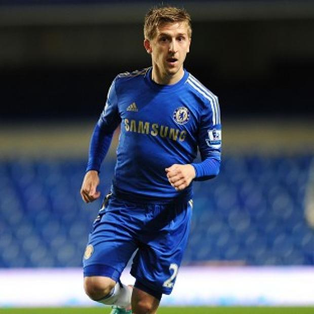 Marko Marin believes Chelsea can win the Premier League and the Champions League