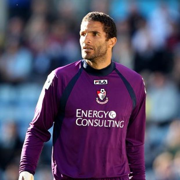 David James does not believe racism is as big an issue in football as it is made out to be