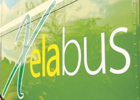 Bus merger collapses