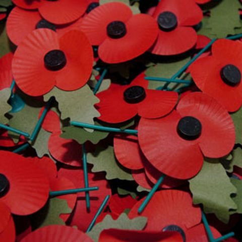 Thief grabs Poppy Appeal tin in Winchester