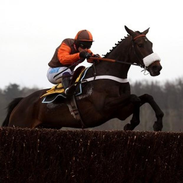 Long Run enjoyed more success at Kempton