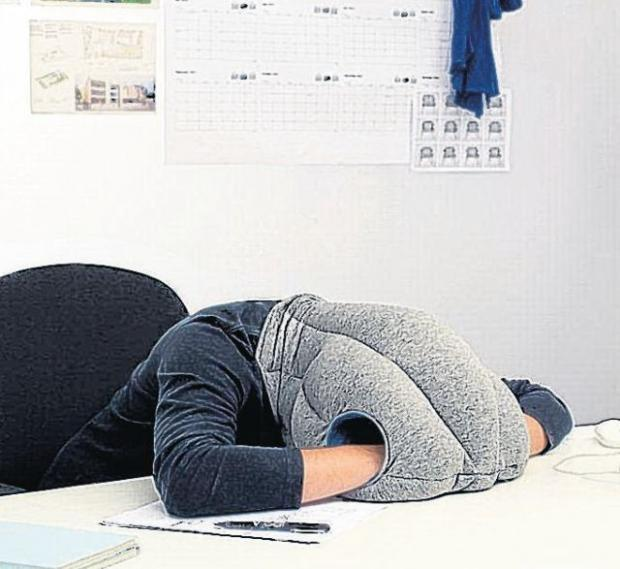 IN DEMAND: The Ostrich Pillow
