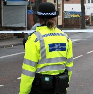 A teenager has been stabbed to death in the Pimlico area of London, police said