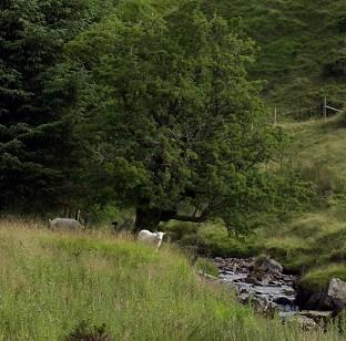 The body of a soldier was found near the base of the Brecon Beacons