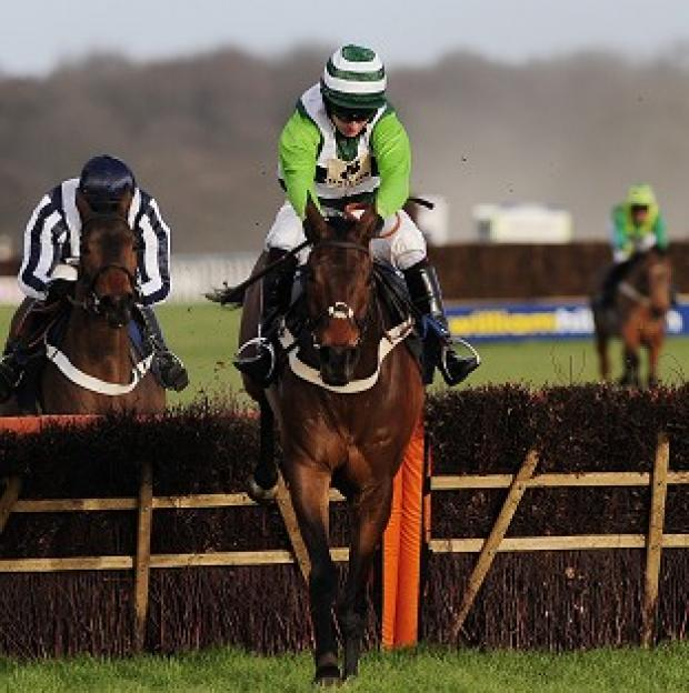 Rock On Ruby is amongst the favourites for the Champion Hurdle