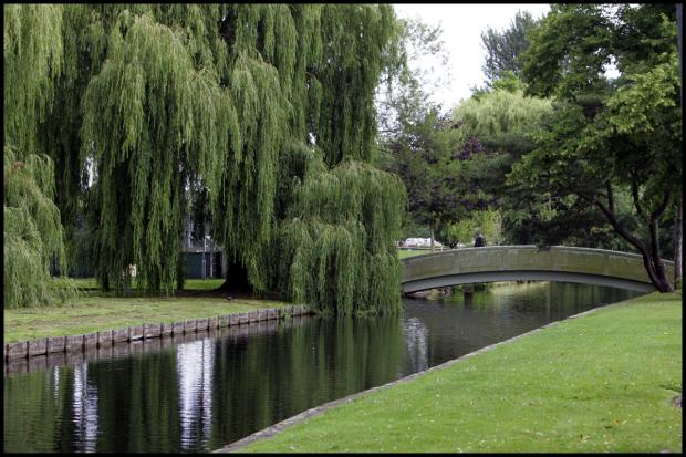 Hampshire Chronicle: River Park: under threat from development