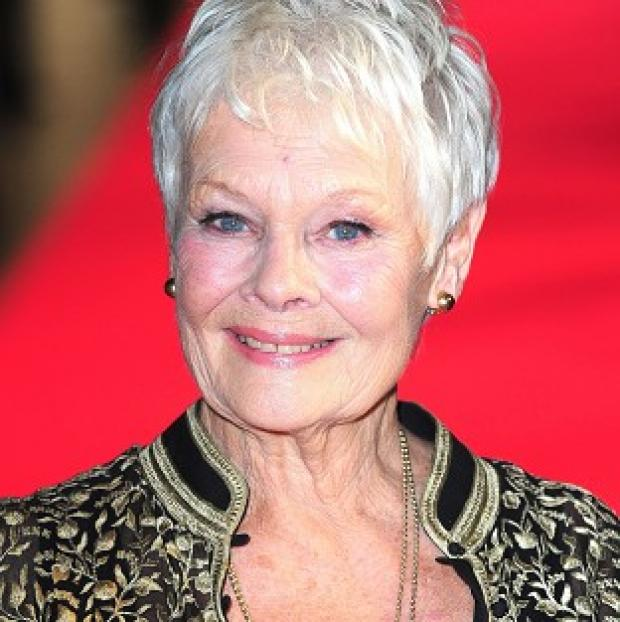 Hampshire Chronicle: Dame Judi Dench has recalled flashing her bottom at Harvey Weistein in a Hollywood restaurant