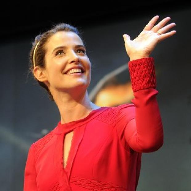 Hampshire Chronicle: Cobie Smulders featured in the latest episode of How I Met Your Mother
