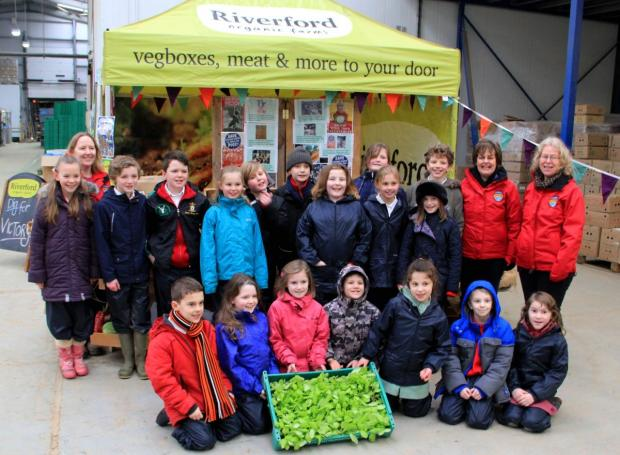 Hampshire Chronicle: Children from Stockbridge Primary School learnt about growing their own fruit and vegetables