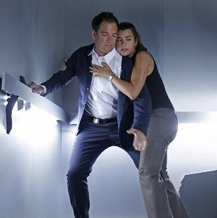 Michael Weatherly and Cote de Pabl