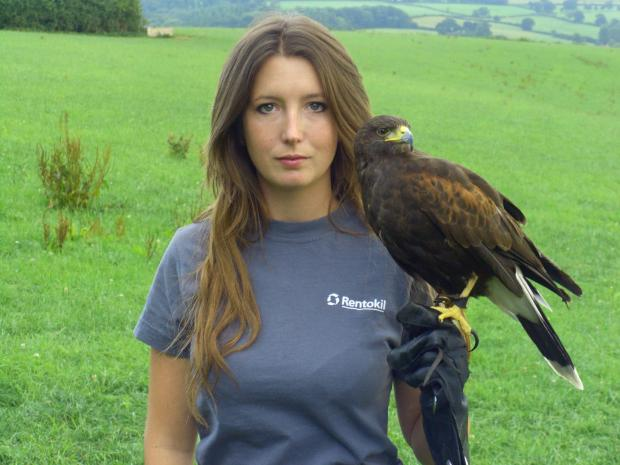 Hampshire Chronicle: Layla Bennett with her Harris Hawk Hope