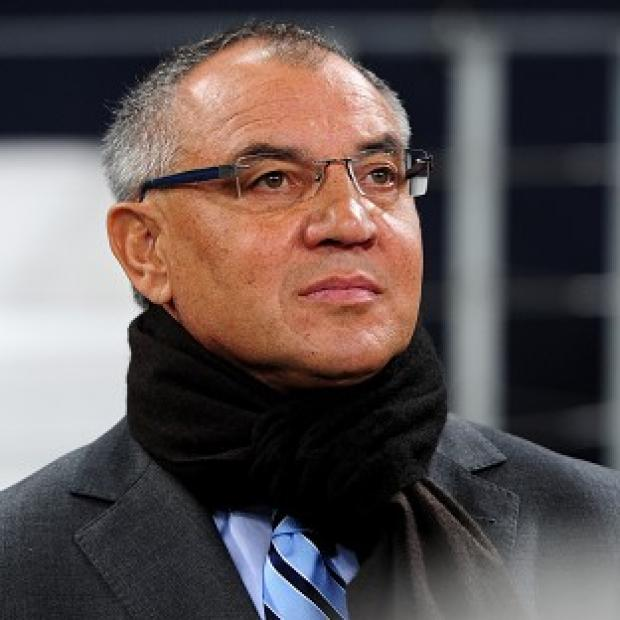 Hampshire Chronicle: Felix Magath believes he can keep Fulham in the Premier League