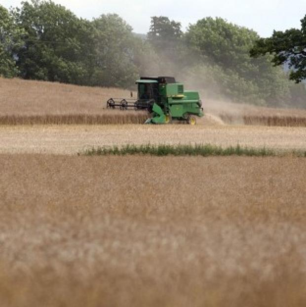 Hampshire Chronicle: A report shows UK agriculture's contribution to the economy increased by 54% between 2007 and 2012