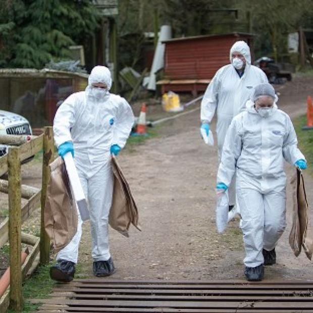 Hampshire Chronicle: Police at the murder scene at Keepers Cottage Stud