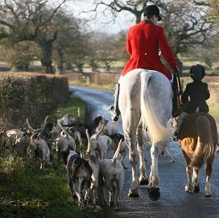 Hampshire Chronicle: Campaigners want the Government to scrap a ban on hunters using more than two dogs to flush out foxes