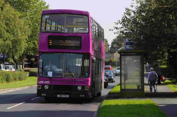 Hampshire Chronicle: Black Velvet buses