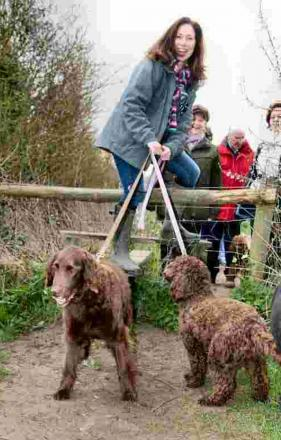 Sarah Cresswell, with Labradoodle Polly (left) and Cockapoo Posy, clamber over the stile.