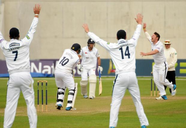 Hampshire Chronicle: Matt Coles traps Scott Elstone lbw