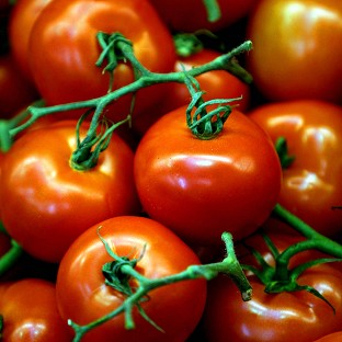 Research has shown that a daily tomato pill can significantly improve the functioning of blood vessels in patients with heart disease.