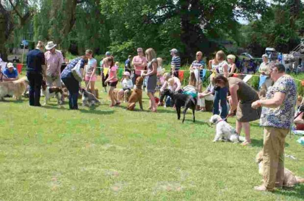 Hampshire Chronicle: Crowds gathered at the Old Alresford village fayre. Picture: Hilary Cornford