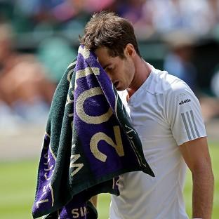Andy Murray, pictured, fell to Grigor Dimitrov in the last eight