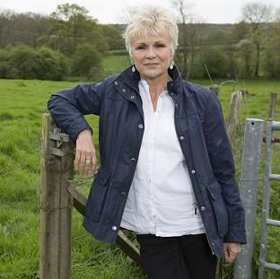 Julie Walters discovered her