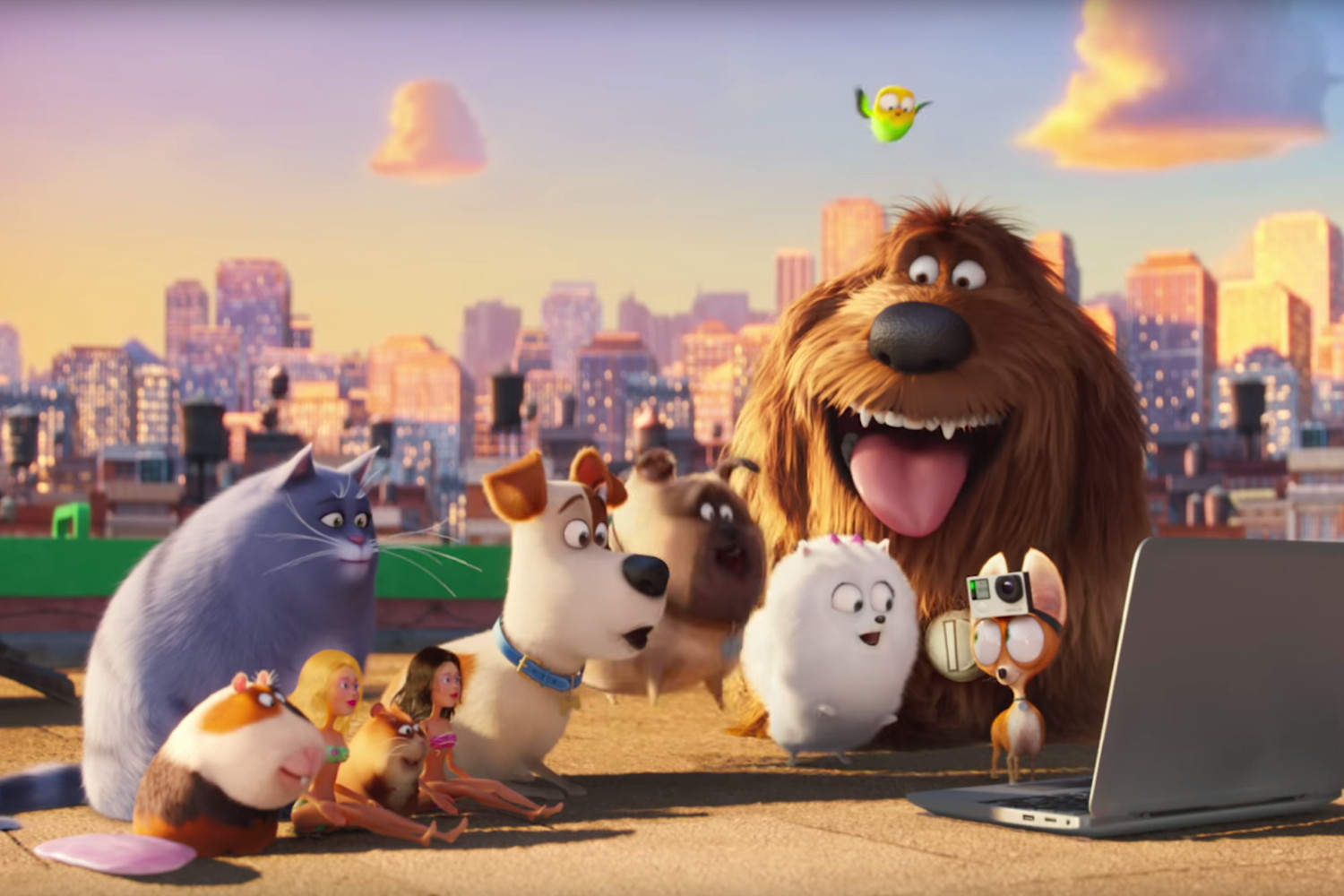 Saturday Morning Movie & Make: The secret Life of Pets (U)
