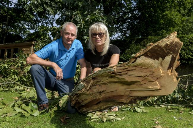Paul and Yvonne Robson in their back garden with the branch that fell