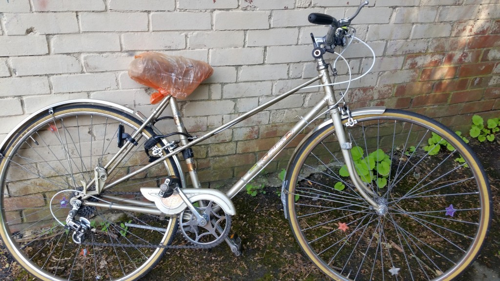 bike found by Chris Robinson