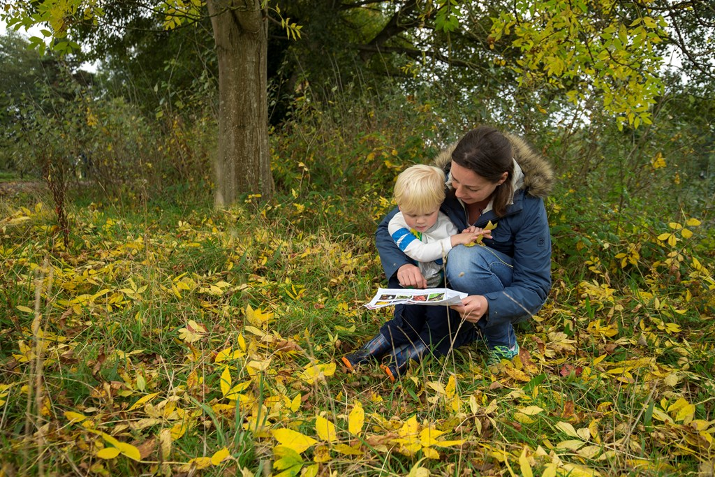 Nature Tots at RSPB Arne