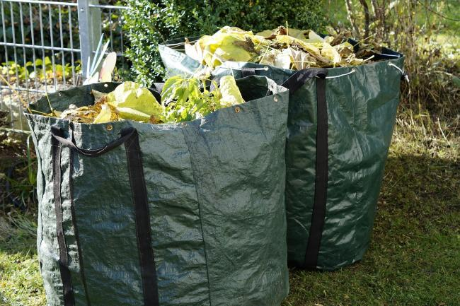 Garden waste collections to be 'partially' re-introduced
